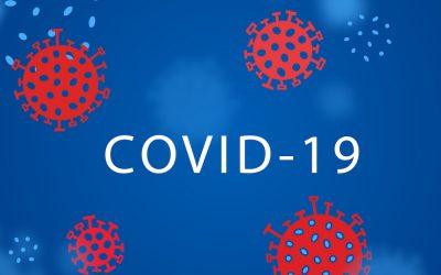 Demokracija, ljudska prava i zaštita osobnih podataka u vrijeme COVID-19 pandemije